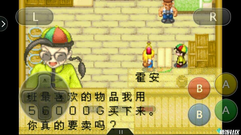 牧场物语女孩镇的矿石们伙伴版_悟饭游戏厅天刀燕云攻略主线图片